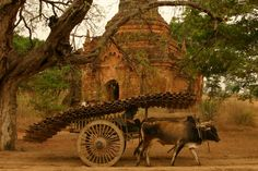 The Incredible Temples of Bagan, Myanmar / Burma, Asia Travels | The Planet D: Adventure Travel Blog