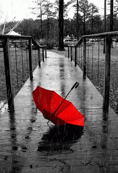 "Via Google+: Weather is a great metaphor for life - sometimes it's good, sometimes it's bad, and there's nothing much you can do about it but carry an umbrella."" — Terri Guillemets"