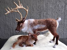 A beautiful Needle felted Mama Reindeer and Calf, and created just for you! They are so cute! Each one is felted over a full wire skeleton for stability and gentle posing. Each will have hand sculpted and painted epoxy hooves and Mama has sculpted antlers, and hand painted glass