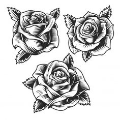Buy Vintage Roses by imogi on GraphicRiver. Vintage beautiful rose flowers set in monochrome style isolated vector illustration Rose Drawing Tattoo, Tattoo Design Drawings, Tattoo Sketches, Dead Rose Tattoo, Bild Tattoos, Body Art Tattoos, Sleeve Tattoos, Stencils Tatuagem, Tattoo Stencils