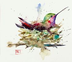 Hummingbird in nest limited edition giclee' print from an original watercolor painting by dean crouser Watercolor Hummingbird, Hummingbird Art, Watercolor And Ink, Watercolor Paintings, Watercolors, Watercolor Ideas, Nature Prints, Bird Prints, Giclee Print