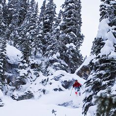 @evans_leah of @girlsdoski at @mustangpowder - being in these massive mountains gives you perspective. #Catskiing  @stevedfoto @catskiing #skiing