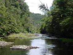 El Parque Nacional Tolhuaca se encuentra enclavado en los faldeos cordilleranos de la comuna de Curacautín, provincia de Malleco, Región de la Araucanía, #Chilelindo