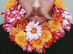 The Gay Beards : Photo
