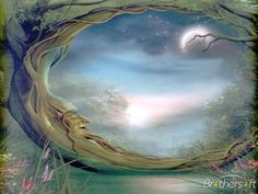 mystical images | Download Free MYSTICAL FOREST WALLPAPER, MYSTICAL FOREST WALLPAPER ...