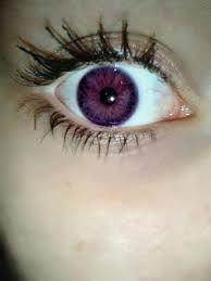 Výsledok vyhľadávania obrázkov pre dopyt purple eyes