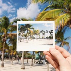 Urban Outfitters - Blog - UO Road Trip: Miami, Florida