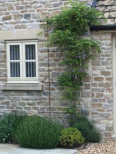 Climbing Clematis, Trellis Ideas, Garden Spaces, Outdoor Structures, Wall, Outdoor Decor