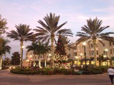 #Lakewood Ranch Main Street getting ready for 2013 Holiday Season