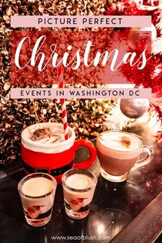 The ULTIMATE bucket list for Washington DC this winter. All of the best Christmas events in DC you won't want to miss! The best things to do in DC for couples, kids, families, and friends this holiday season! Christmas Events, Christmas Travel, Holiday Travel, Christmas Fun, Christmas Markets, Christmas Getaways, Christmas Destinations, Usa Travel Guide, Dc Travel