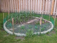 Construct a Raised Planting Bed