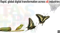 Digitale Transformation: Was ist das? #Consulting_Coaching #Airbnb #Alibaba