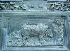 inesplicata: il rinoceronte di Durer e quello del duomo di Pisa