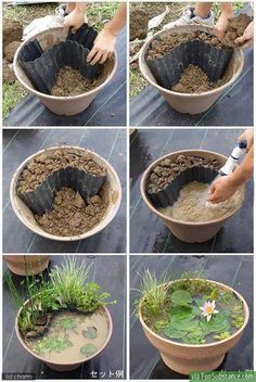 Instant water garden for small spaces. I'm goingto put one on my patio.