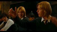 Harry Potter Gif, Harry Potter Friends, Mundo Harry Potter, Harry Potter Draco Malfoy, Harry Potter Images, Harry Potter Wallpaper, Harry Potter Characters, Slytherin, Hogwarts