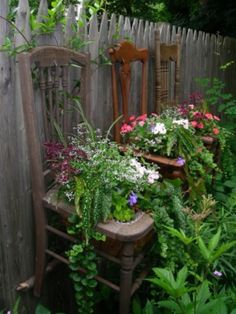 Repurposed, old chairs with plants - creative planters