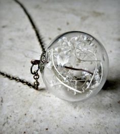 Glass Orb Dried Babys Breath Terrarium Pendant by Heron and Lamb on Scoutmob Shoppe - http://scoutmob.com/p/Baby-Breath-orb