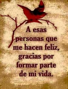 Cute Spanish Quotes, Spanish Inspirational Quotes, Good Morning Inspirational Quotes, Morning Quotes, Good Morning Funny, Good Morning Messages, Thank You Quotes, Love Me Quotes, Positive Phrases