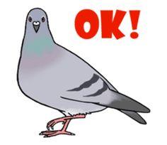 Cute Pigeon by Studio Pigeon Cute Pigeon, Origami Dove, Line Store, Line Sticker, Sailor Moon, Kawaii, Cute Babies, Chat App, Cute Animals