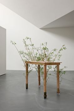 Perrine Lievens - an object lesson in Graham Harman's speculative realism Turbulence Deco, Plant Projects, Green Table, Land Art, Installation Art, Sculpture Art, Contemporary Art, Modern Art, Furniture Design