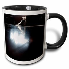 Jos Fauxtographee Realistic - A Shiatsu Lhasas Doggie on a Laminate Floor with the Windows Light Reflecting on Her - 11oz Two-Tone Black Mug (mug_44052_4) 3dRose http://www.amazon.com/dp/B01351SLWY/ref=cm_sw_r_pi_dp_8-K2wb1CSA4MG