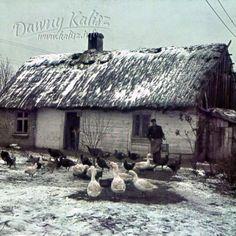 Dawna polska wieś-chałupa ''pod strzechą'' My Heritage, Poland, Countryside, Nostalgia, Folk, Cottage, Cabin, Memories, Traditional