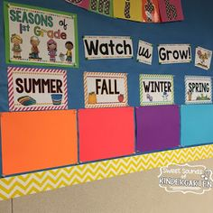 Take a picture of your kiddos on the first day of each season, and post the pictures underneath each seasonal header to create your classroom timeline! Perfect decorations for kindergarten! First Grade Classroom, Classroom Setup, Classroom Design, Classroom Displays, Future Classroom, Classroom Organization, Classroom Resources, Beginning Of School, First Day Of School