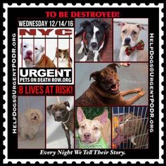 TO BE DESTROYED 12/14/16