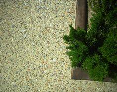 Pavimento de hormigón árido visto en combinación con elementos paisajistas