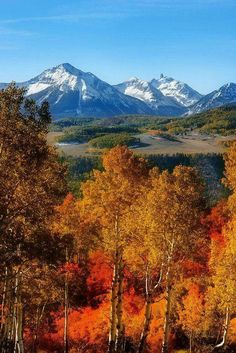 12 Amazing Fall Getaways To See Fall Foliage, That time of year has come once again. The fall season is creeping up, and many people are deciding on vacations to see some beautiful fall foliage. Beautiful World, Beautiful Places, Beautiful Scenery, Changing Leaves, Colorado Mountains, Colorado Usa, Rocky Mountains, Telluride Colorado, Seen