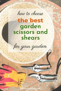 Scouting the market for the best garden scissors & shears? Check out this fully informative buyer's guide, with a list of the top-notch products included! Succulent Gardening, Container Gardening, Gardening Tips, Garden Projects, Garden Tools, Garden Ideas, Diy Projects, Hairstylist Quotes, Garden Pictures