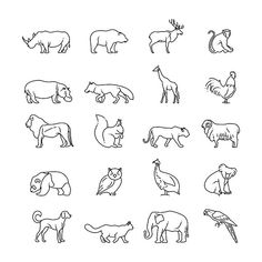 Animals thin line vector icons by MicroOne on @creativemarket