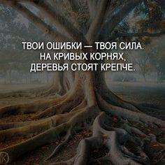 #мотивация #цитаты #мысли #счастье #жизнь #саморазвитие #мудрость #цитатывеликихлюдей #любовь #мудростьвостока #мыслимысли #высказывания #мотивациястрашнаясила #совет #deng1vkarmane