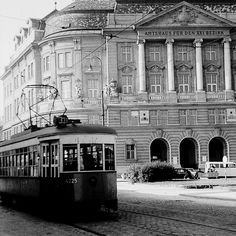 Tiergarten Schönbrunn, Historical Photos, Alter, Louvre, Friends, Building, Vienna, Interwar Period, Trench