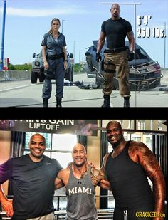 38 Real Size Comparisons That Will Make Your Head Explode Funny Laugh, Haha Funny, Funny Memes, Hilarious, The Rock Dwayne Johnson, Rock Johnson, Vin Diesel The Rock, Ju Jitsu, Deus Vult