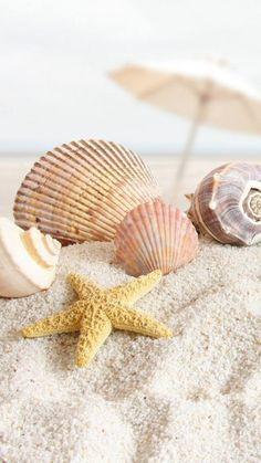 beach wallpaper by - - Free on ZEDGE™ Ocean Wallpaper, Summer Wallpaper, Aesthetic Iphone Wallpaper, Nature Wallpaper, Wallpaper Backgrounds, Image Zen, Beach Background, Beach Aesthetic, Beach Scenes