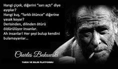 Charles Bukowski, Einstein, Personality, My Life, Give It To Me, Like4like, Poetry, Words, Instagram Posts