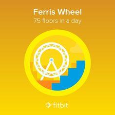 Fitbit Ferris Wheel