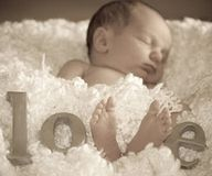 Newborn photo- Love!