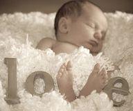 Newborn photo- Love!