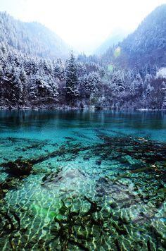 travelingcolors:  Five Flowers Lake, Jiuzhai   China (by Eric Xingang)