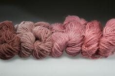Adventures in Wonderland: Cochineal dye