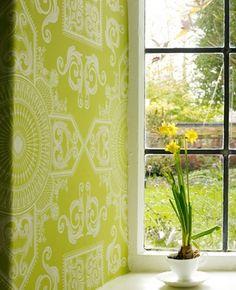#wall paper #wallpaper #green wall paper