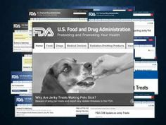 ▶ THE DANGER OF CHICKEN IMPORTED FROM CHINA - ANIMAL PARENTS AGAINST PET TREATS MADE IN CHINA - YouTube