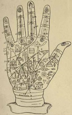 Vintage Palm Reading chart.
