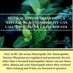Tidbit Tuesday: Today is Day#2 of our myth-busting beliefs around #NaturopathicMedicine. A lot of terms around the practice of natural medicine modalities are used by many people. Naturopathic Medicine is a #regulated profession in many of the #Canadian #provinces and individual US states. The road of a #NaturopathicPhysician training is a long and rigorous one, encompassing well over 7 years and 5000+ hours of pre-med, academic training from an accredited Naturopathic medical school, clinic…