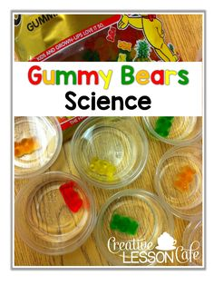 Creative Lesson Cafe: Sweet and Simple Science! Gummy Bears Experiment and FREEBIE lab sheet