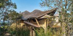 Escritório projeta casas de bambu na Indonésia que parecem parte da natureza (Foto: Eric Dinardi)