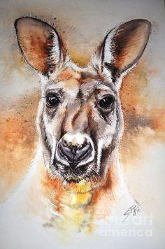 Kangaroo Big Red Painting by Sandra Phryce-Jones Australian Animals, Australian Art, Animal Sketches, Animal Drawings, Watercolor Animals, Watercolor Art, Aboriginal Art, Wildlife Art, Animal Paintings