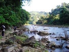 Keokradong trek (Jhiri path)